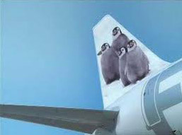 penguin airlines