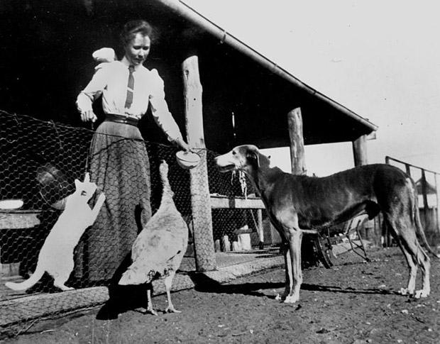 Хектор, при леля Анастасия, 1965